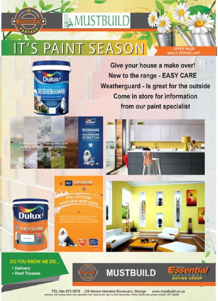 thumbnail of Paint-Promo